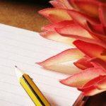 successful writers blossom